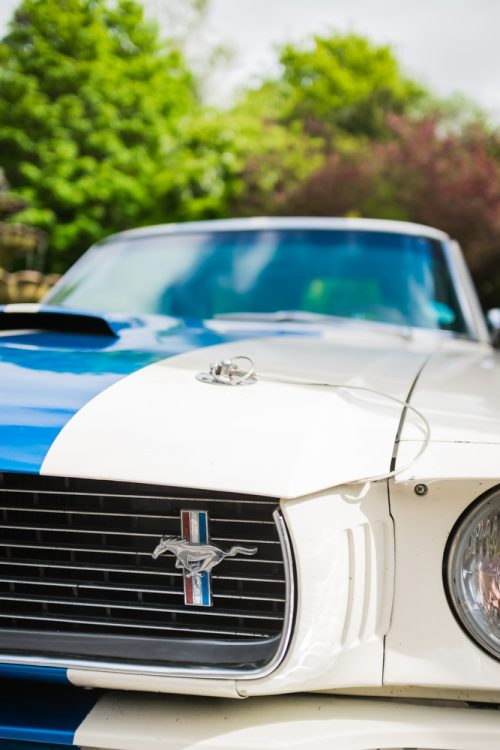 1966 Mustang GT 350 grille