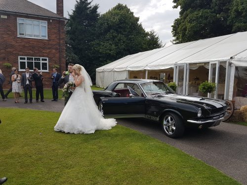 bride and groom relaxing with black mustang gt 350
